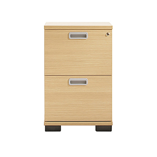 Senator 2 drawer filing cabinet Storage
